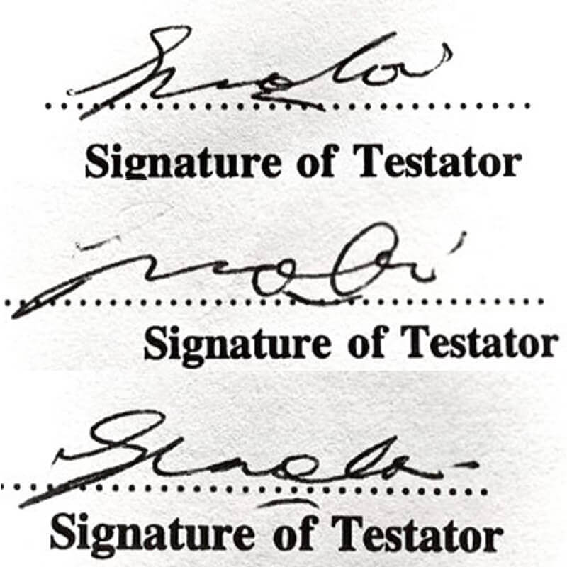 Forensic handwriting analysis example with signatures